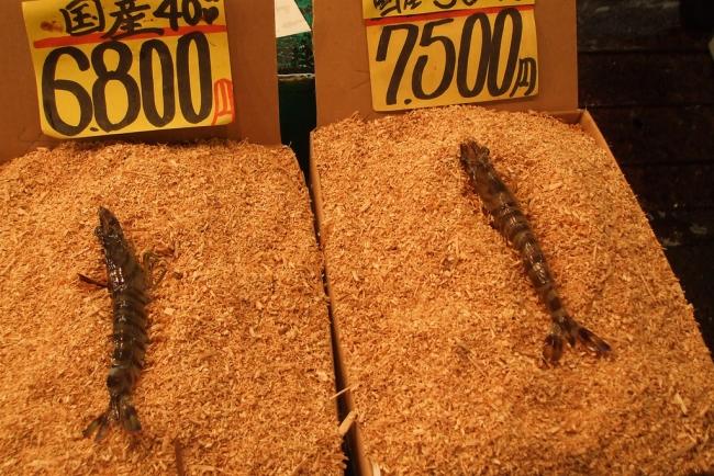 Expensive Shrimp