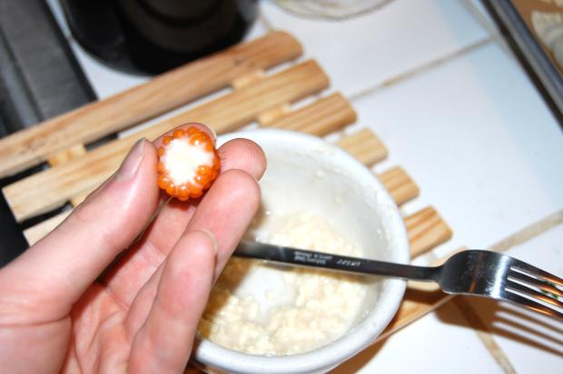 Stuffed salmonberry. Photo credit: Fink