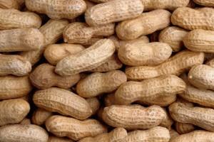 Legumes: Peanuts