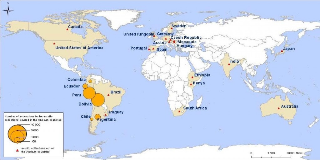 Quinoa Worldwide Genetic Resources Distribution (ex situ conservation)