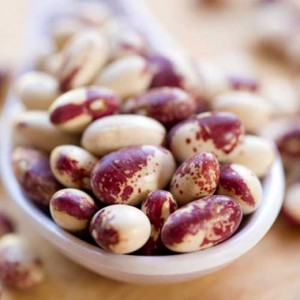 Rockwell Beans (Credit: Willowood Farm)