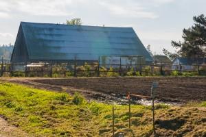 Nash's Organic Produce, Sequim WA