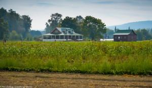 Jubilee Biodynamic Farm, Carnation WA