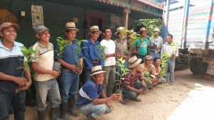Coffee farmers of ASOIxil with new trees.